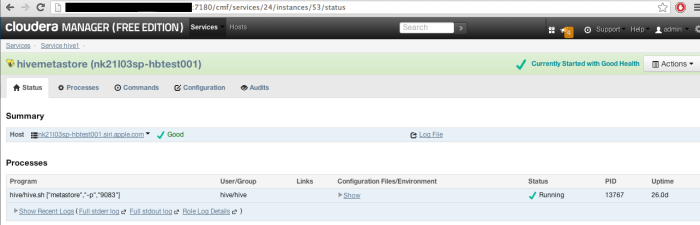 Hadoop - Cloudera Manager - Hive - Status