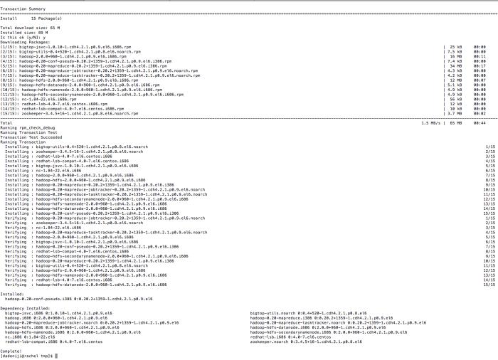 hadoop-conf-pseudo -- install (afirmative)