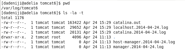 Apache / Tomcat – Microsoft SQL Server – Sample Database