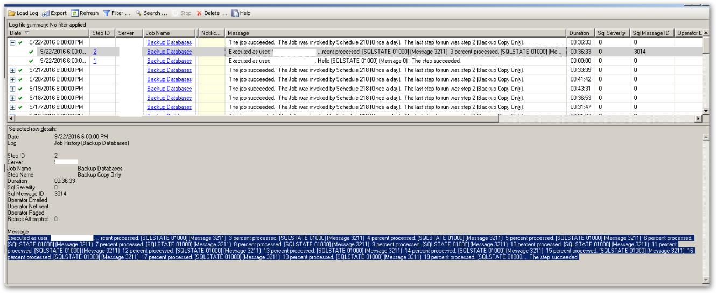 backupdatabaselogbrushed-up