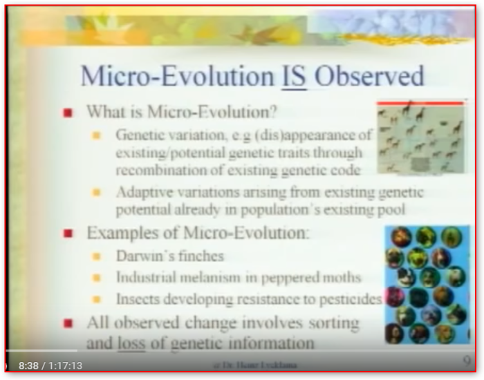 microevolutionisobserved