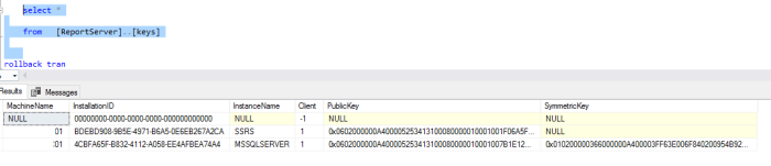 ReportServer.dbo.keys.01.20181111.0342PM [brushedup].png